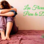 flores-de-bach-para-la-depresion